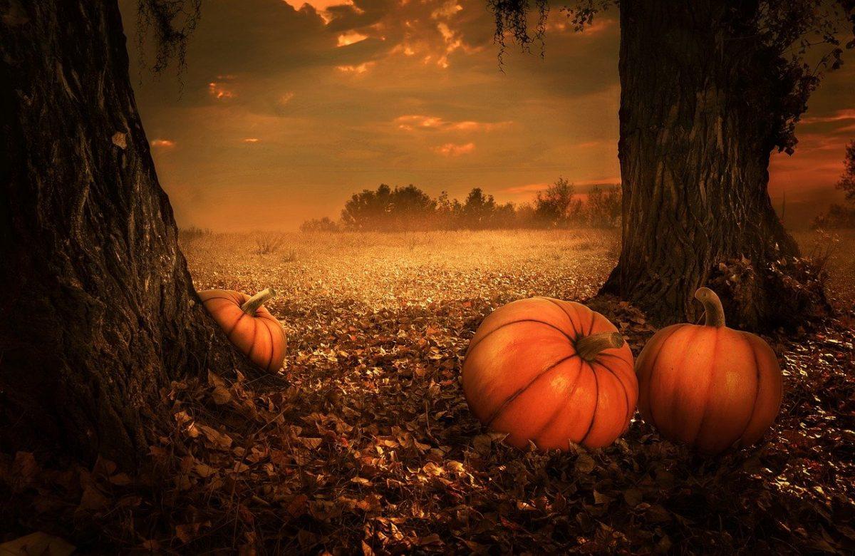 Halloween en Loire-Atlantique